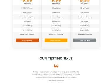3 Pages WordPress website design and development