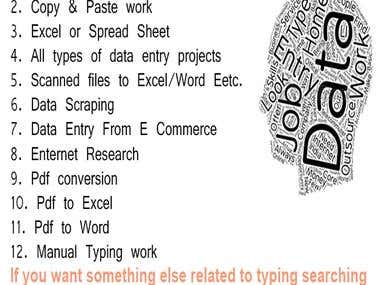I Will Do All Type Off Data Entry And File Conversions