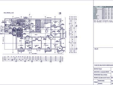 CAD plans for executive project
