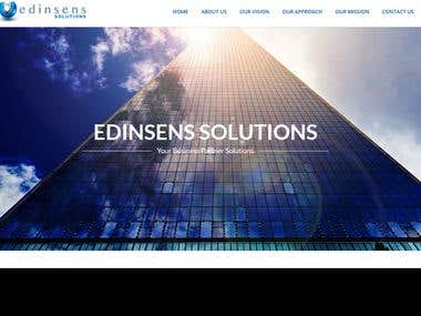 Edinsens Project