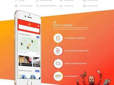 Mr. Multi Website Design