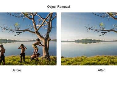 Object Removal
