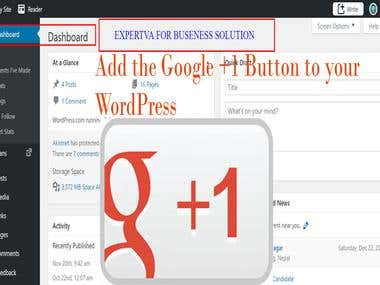 Add the Google +1 Button to your WordPress