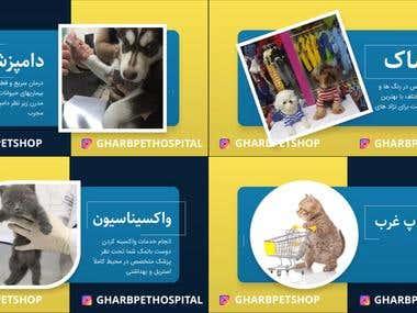 Gharb Petshop Video