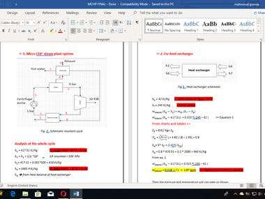 Technical report on Micro CHP steam plant system