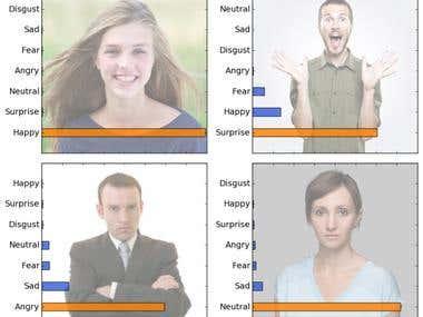 Face Emotion Recognition System