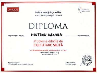 Diploma Legal Conference -enforcement procedure
