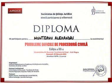 Diploma Legal Conference - Procedural Law