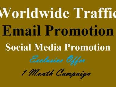 I Will Give Traffic From Social Media Email Promotion