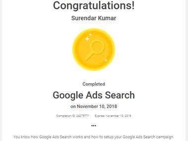Google Search Certificate.