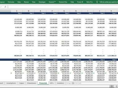 Balance Sheet and Profit & Loss Projections