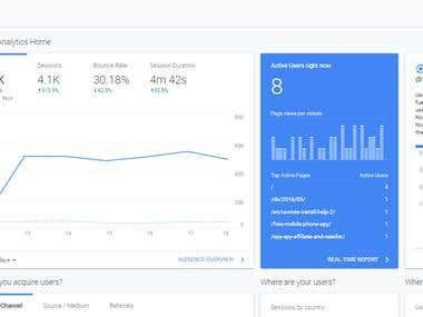 Organic/ Real Traffic by White hat SEO