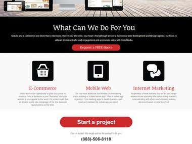 E-Commerce & Portfolio Website of a developing Complany