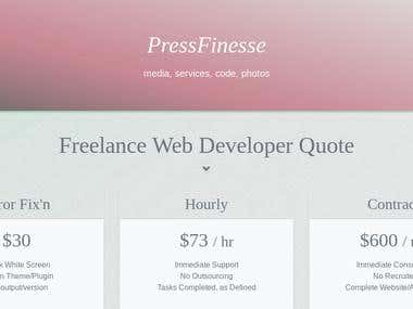 Pressfinesse: Developer Solutions and Media