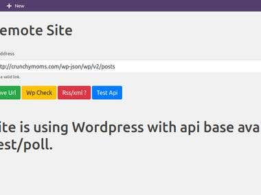 Custom Wordpress Plugin