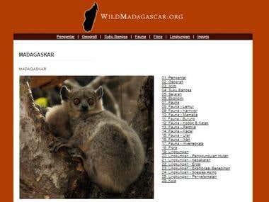 Website Translation: A Tour of Madagascar