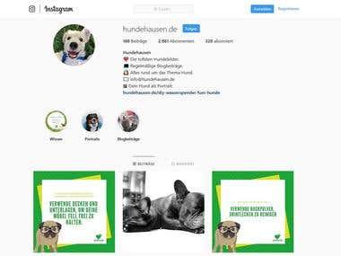 Social Media Managment - Instagram