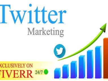 I Will Do Professional Twitter Marketing For Your Business