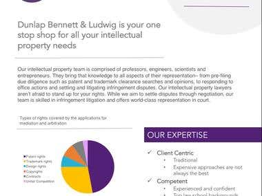 Collateral Template for a law firm