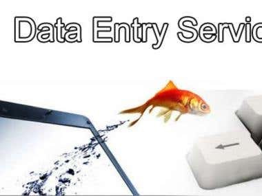 Data Entry (Excel ,word office,ppt)