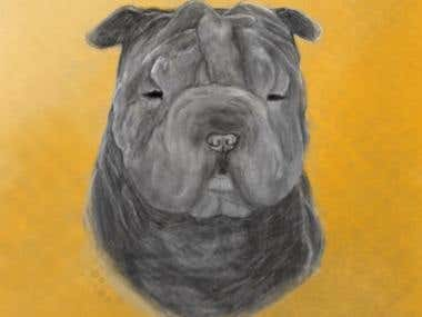 Sketch of a Dog