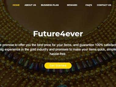 MLM(Website Designing & Development)