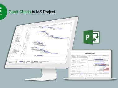 Gantt Charts in MS Project
