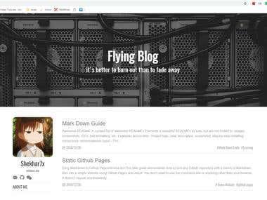 Flying Blog