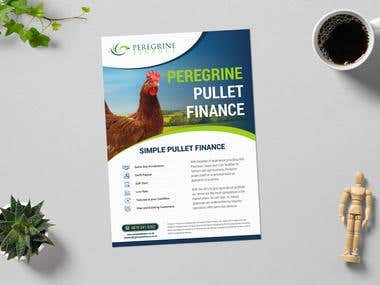Peregrine Finance Flyer