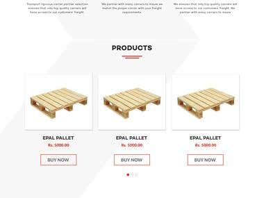 Website home page layout design