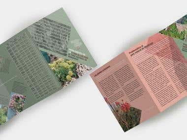 """Diseño de folleto informativo """"Problemática de la flora al·l"""