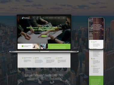 The Profit Line New York Website - Design and Development