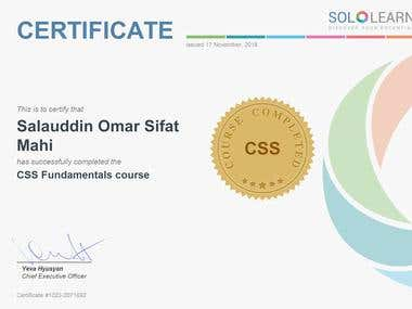CSS cource certificate