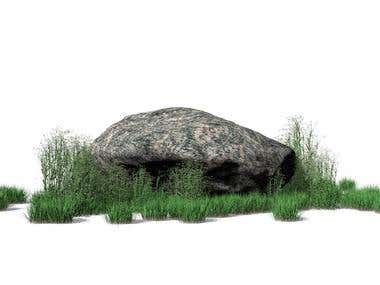 Stone with plants