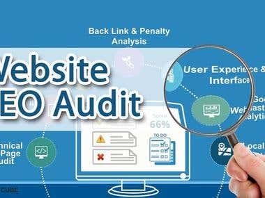 Website Audit Report