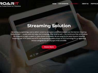 RoarIT Solution