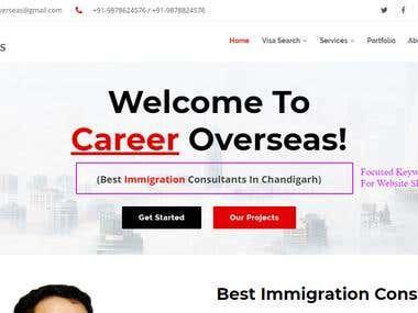 SEO Optimized Website Of Career Overseas Immigration Company