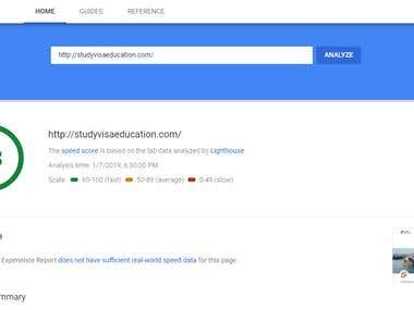 Google Page Speed Test Of My Optimized Website