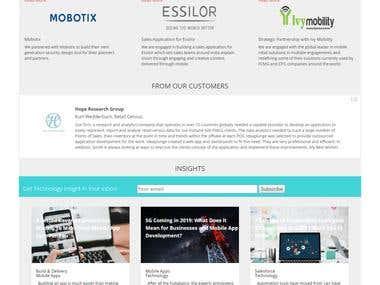 Wordpress Website - Ideapludge (IT company website)