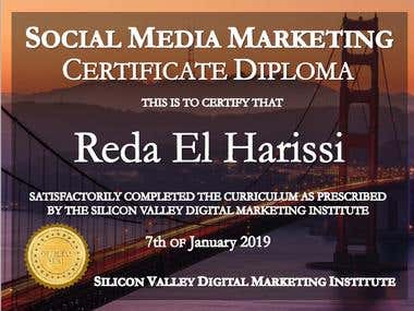 Professional certification in Social Media Marketing