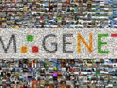 ImageNet Large Scale Visual Recognition Challenge