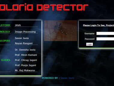 Web project portal