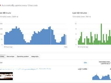 Youtube Channel Traffic