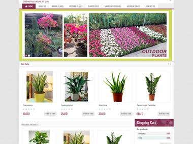 Prestashop Online UAE based shop