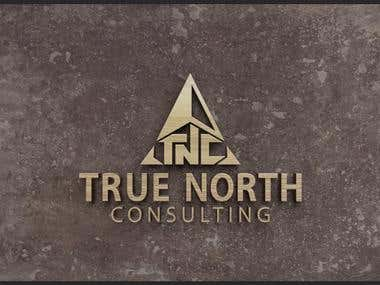 True North Consulting