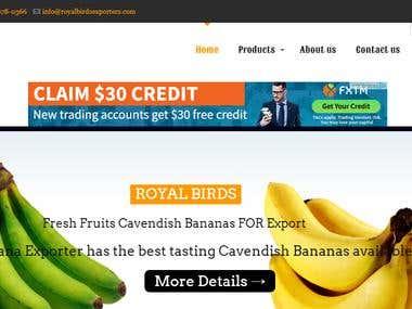 Website For Fruits Exporter