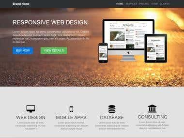 A Business Website for a Service Provder