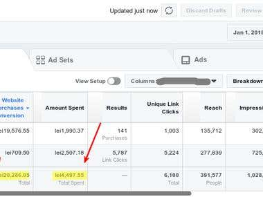 Facebook Ads Profitable Campaigns