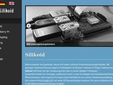 My business website Silikoid.biz