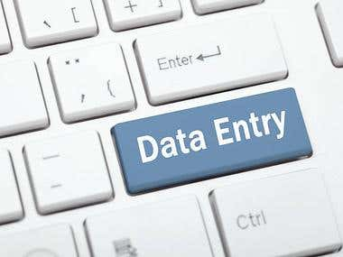 Data Entry Work Service